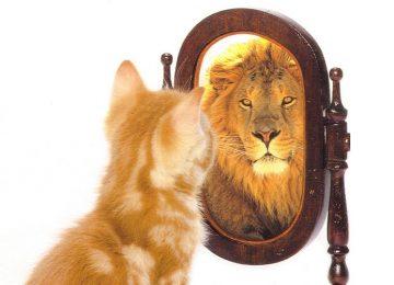 מה זה אומר ביטחון עצמי?