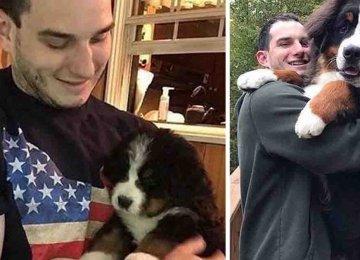 מקסים – 21 בעלי כלבים תיעדו את השינוי שעברו מהיותם גורים עד היום