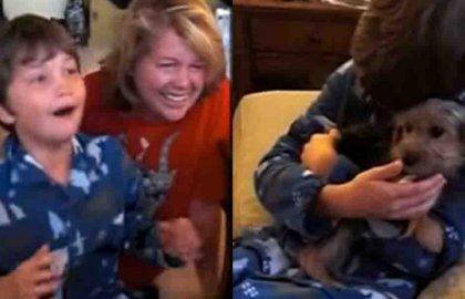 מקסים – ככה הגיב הילד החמוד הזה כשקיבל כלב מתנה לחג המולד