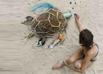 הבחורה הזו אוספת את הפסולת שאנשים משליכים בטבע והופכת אותה ליצירות אומנות כדי להעביר מסר