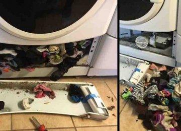 מפתיע – מסתבר שמכונות כביסה באמת אוכלות גרביים ויש שם עוד דברים מפתיעים