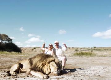 ציידים הצטלמו עם אריה שצדו, אבל אז, כשהם הכי פחות ציפו, הנקמה הגיעה!