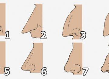צורת האף שלכם אומרת רבות על האישיות שלכם, מהי צורת האף שלכם?