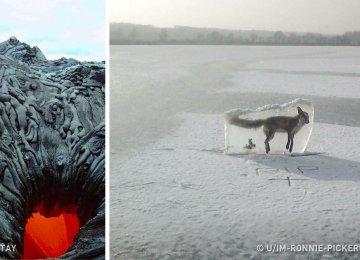 14 תמונות שמוכיחות עד כמה הטבע יכול להיות מפחיד!