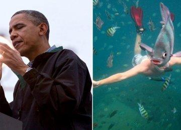 18 תמונות מצחיקות שיגרמו לכם להסתכל פעמיים – ויבדקו אם יש לך דמיון פרוע