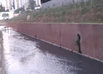 הכלב היה לכוד בתעלה – מה שאיש העסקים הזה החליט לעשות, גרם לכולם להריע לו