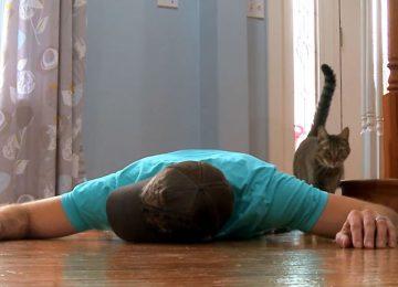 הוא זייף את מותו כדי לבדוק איך החתול שלו יגיב – לתגובה הזאת הוא לא ציפה