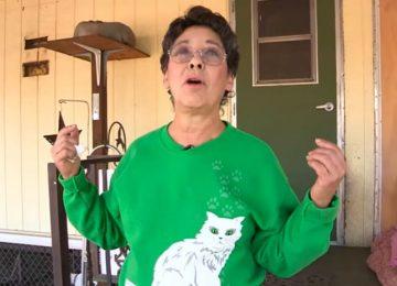 אף אחד לא האמין לה שהיא חייה עם מעל 1000 חתולים – אז היא זעזעה את העולם, כשהכניסה מצלמה לביתה