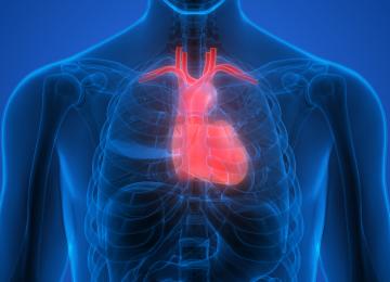 כאשר אתם חולים בסרטן ריאות הגוף מאותת לכם באמצעות 7 הסימנים האלו – זכרו גילוי מוקדם מציל חיים